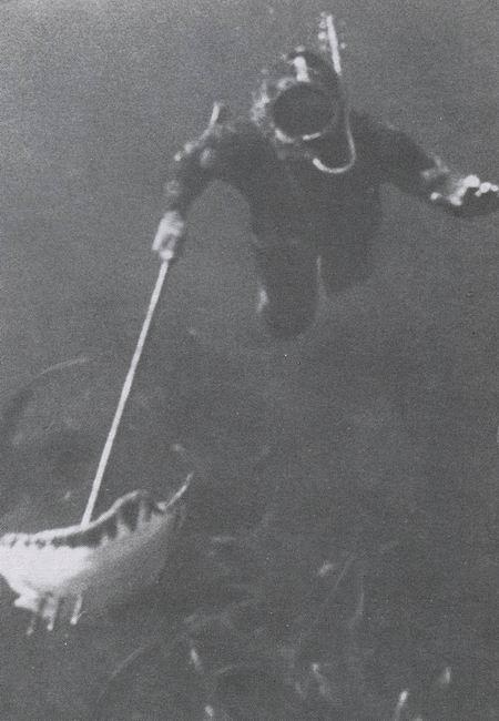 diving_sport